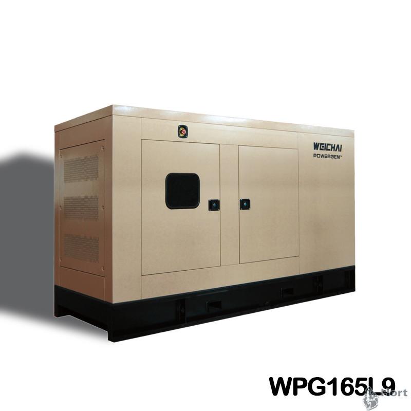 Прокат дизельного генератора WPG110L9