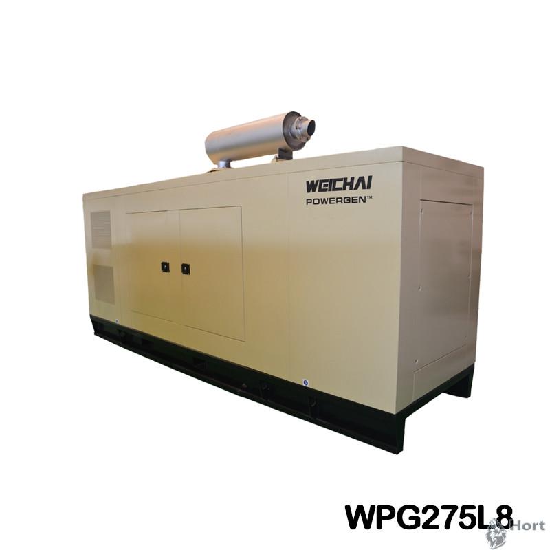 прокат дизельного генератора WPG275L8